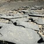 """Sur le glacis précédant la falaise d'une """"gara"""", de grandes dalles de grès noir ont servi de support pour créer de véritables tableaux rupestres."""