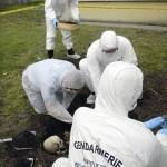 Pour l'exercice, plusieurs gendarmes fouillent et réalisent les prélèvements entomologiques. © Gendarmerie nationale/P. Georges.