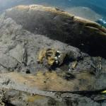 Les restes du brick le Mercure présentent l'un des très rares cas de découverte d'ossements humains dans une épave. Il s'agit d'un marin.