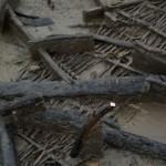 Poutres noircies par l'incendie, gisant sur le sol.  © Cambridge archaeological unit.  DR.
