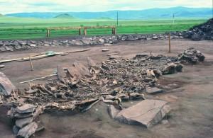 Fouille du site Kurgan Arzhan 2 (Tuva, Sibérie), 7e siècle avant notre ère. Tombe 16. Vue de 14 squelettes de chevaux exhumés. Crédit : Michael Hochmuth, German Archaeological Institute, Berlin.