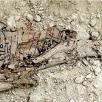 L'un des nombreux papyri découverts dans les galeries du Wadi el-Jarf, près de la mer Rouge. © Pierre Tallet. DR.