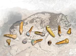 Hyènes et Néandertaliens a Marillac - Les Pradelles. © photo : laboratoire PACEA.