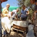 Petit sarcophage ou ossuaire du Minoen Récent III (1370-1050) misd au jour à Kentri Lerapetra. © PhotonNikos Petassis. DR.
