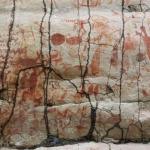 Les parois rupestres découvertes en Colombie ont été surnommées « Chapelle Sixtine des anciens » ©José Iriarte. DR.
