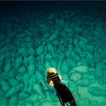 Le leadership mondial de la France dans le domaine des fouilles sous-marines reste incontesté. Photo  : Teddy Seguin/DRASSM.