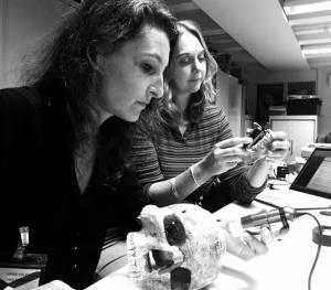 Étude des restes humains de Jebel Sahaba dans le département d'Egypte et du Soudan du British Museum (Londres). Analyse microscopique des lésions osseuses et étude anthropologique par Marie-Hélène Dias-Meirinho (gauche) et Isabelle Crevecoeur (droite).  © Marie-Hélène Dias-Meirinho. Photo de presse.